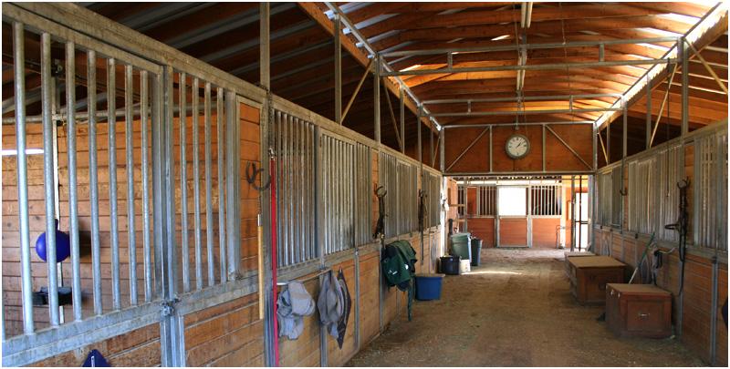 Millpond Equestrian Center - Bishop, CA - Training, Sales, Boarding